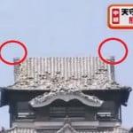 熊本城のしゃちほこが地震で落下?行方不明に!